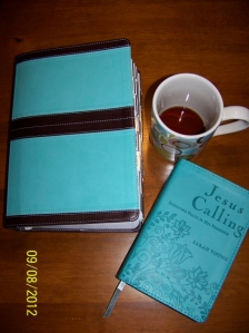 My study bible and devotional (481x640) smaller